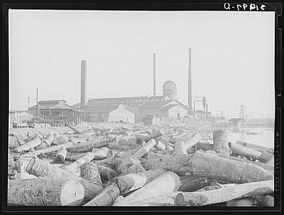 Log_Pond-Saw_Mill-Laurel_MS.jpg